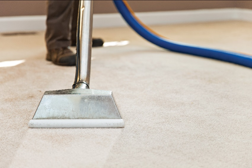 Home Remedies To Help You Remove Paint From Carpet