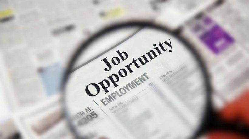 Common Job Search Mistakes New College Grads Make