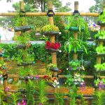 reuse a plastic bottle in the garden